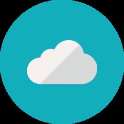 flin-pro-mantenimiento-web-backups