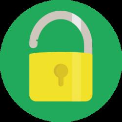 flin-pro-mantenimiento-web-seguridad